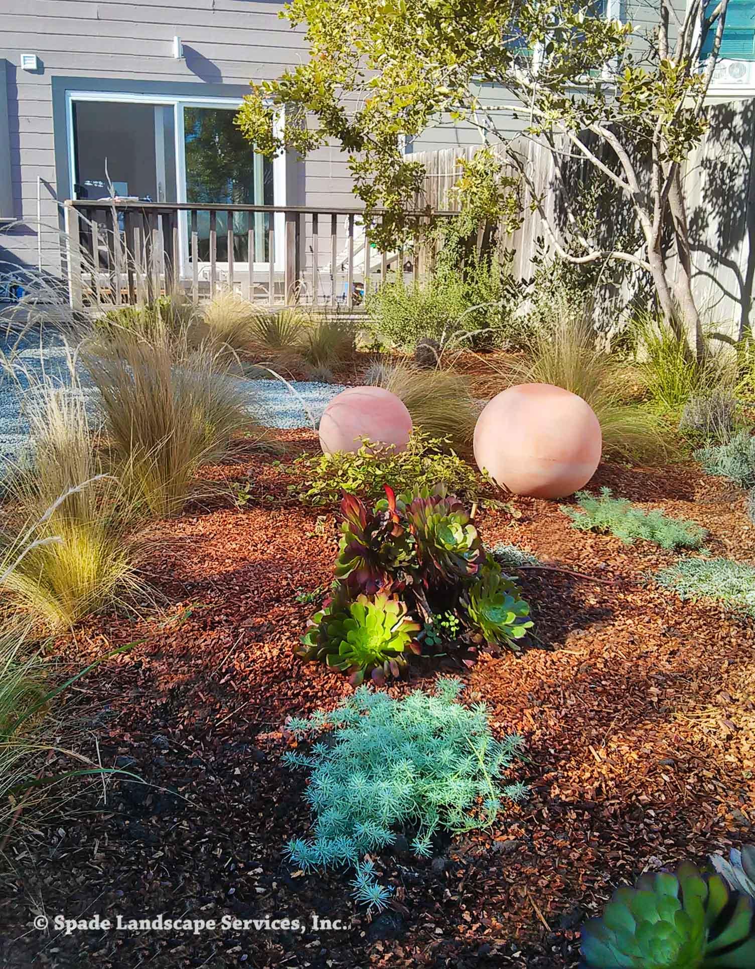 Newly Installed Garden