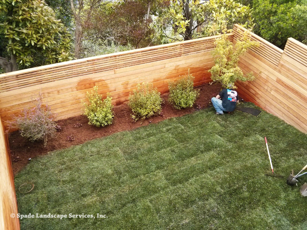 Backyard-Complete-Renovation.jpg