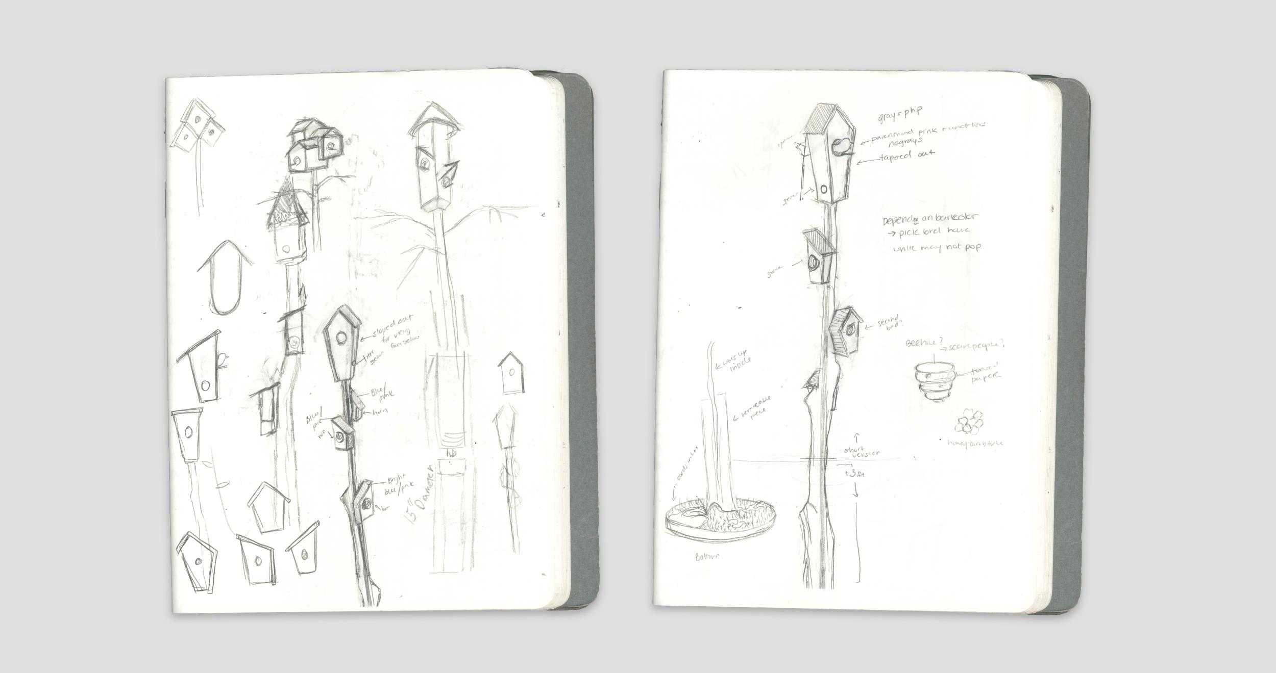 B+B Sketches.png