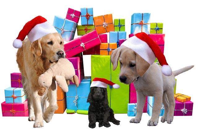 christmas-2983901_640.jpg
