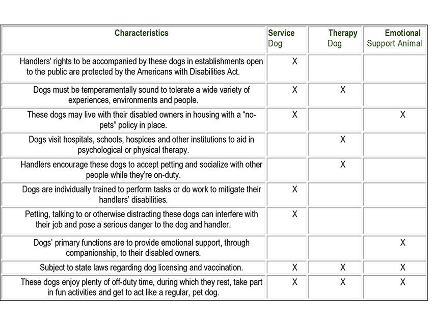 Characteristics.jpg
