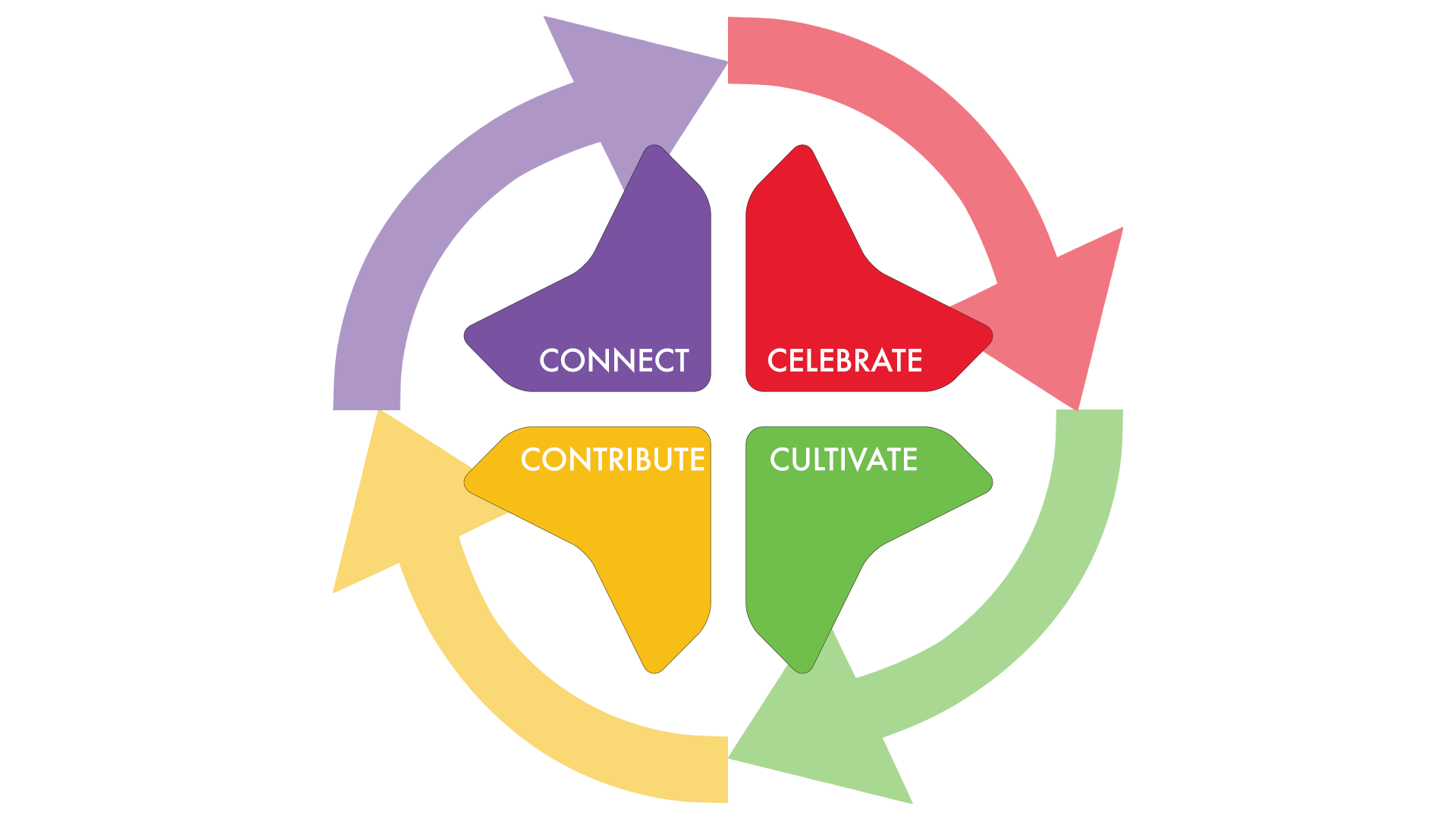 4 C's - Discipleship Cycle transparent.png