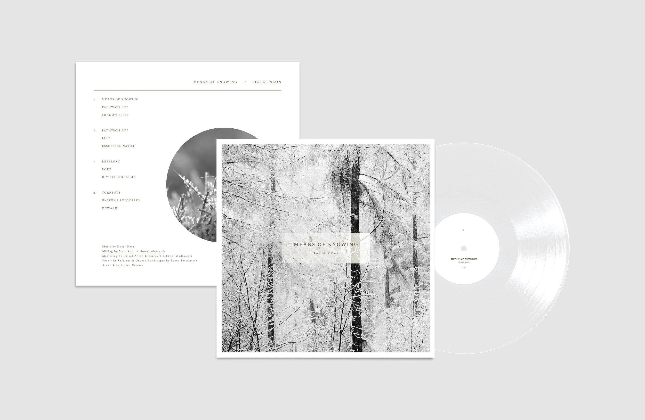 Means of Know Vinyl Mockup_clear.jpg