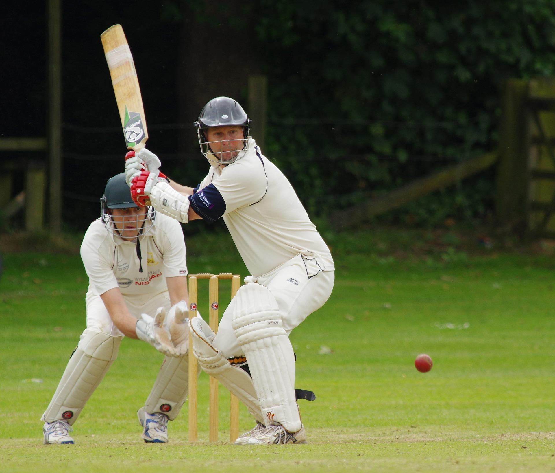 cricket-724617_1920.jpg