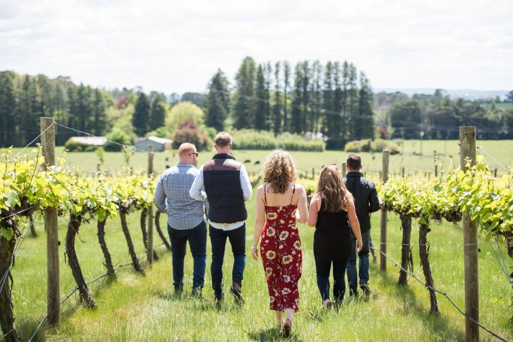 wine-week-01-web.jpg