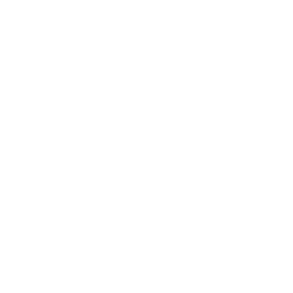 holy-fire-2018-logo-chicago.png