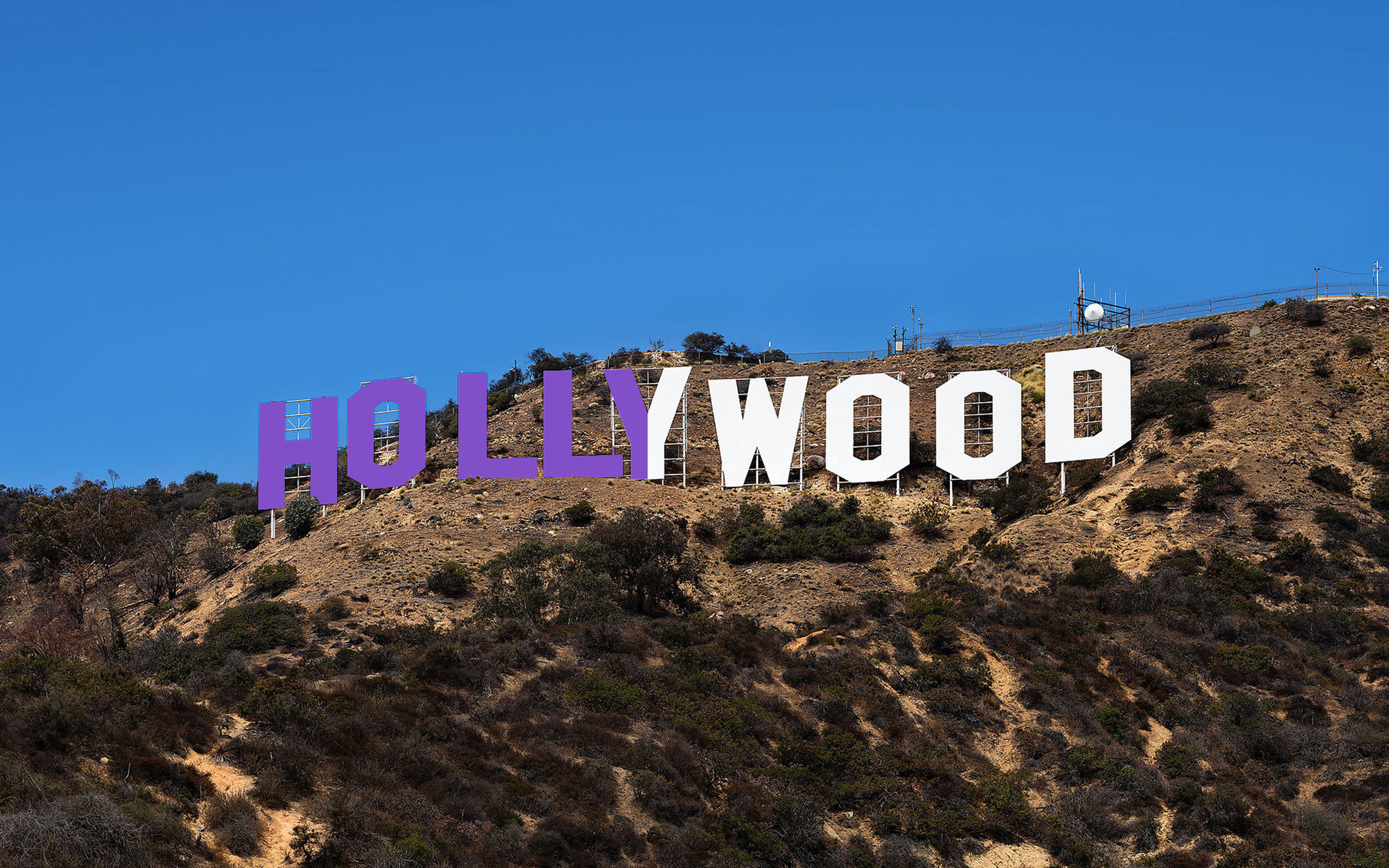 Hollywoodn Purple.jpg