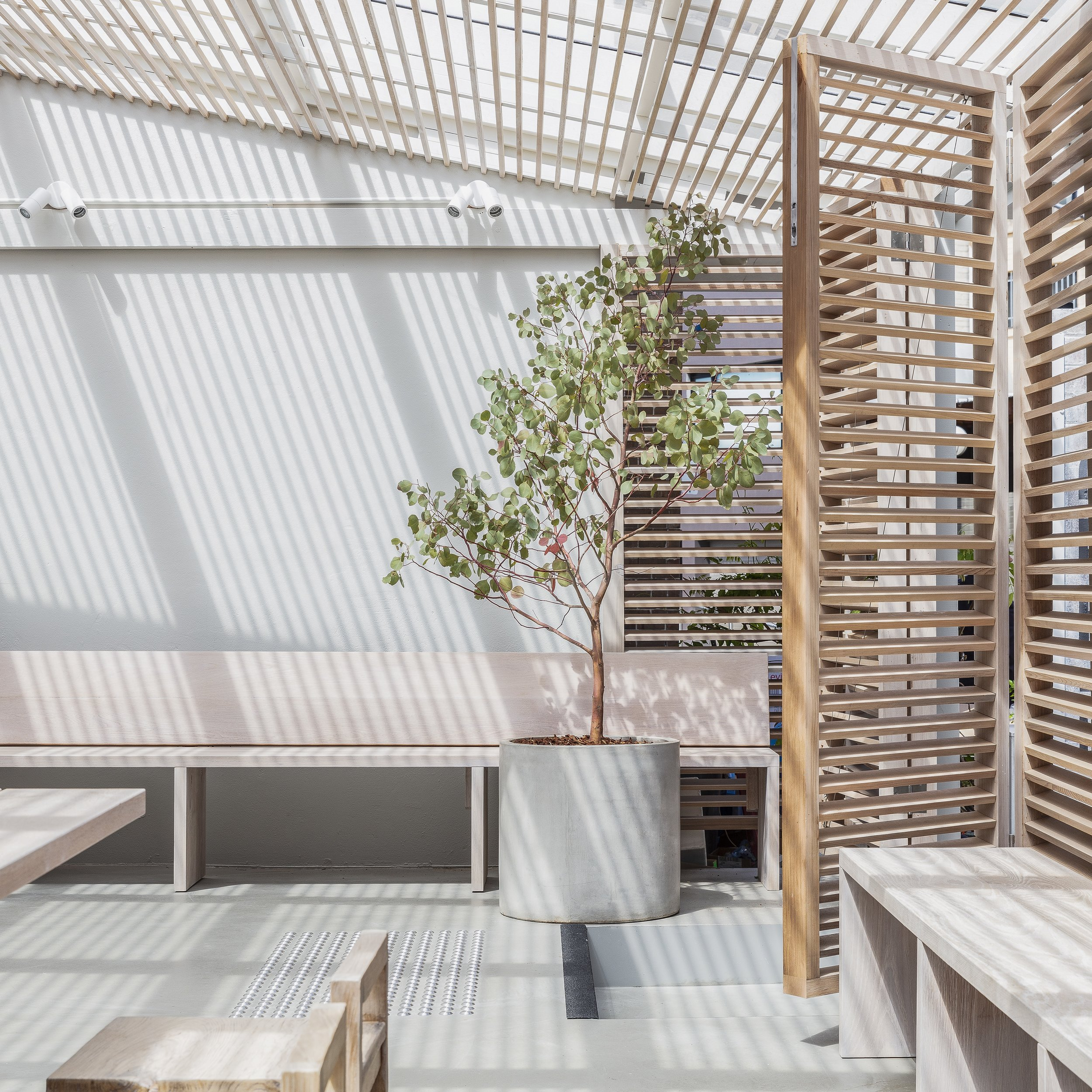The calming zen-like spaces within  Shelter .