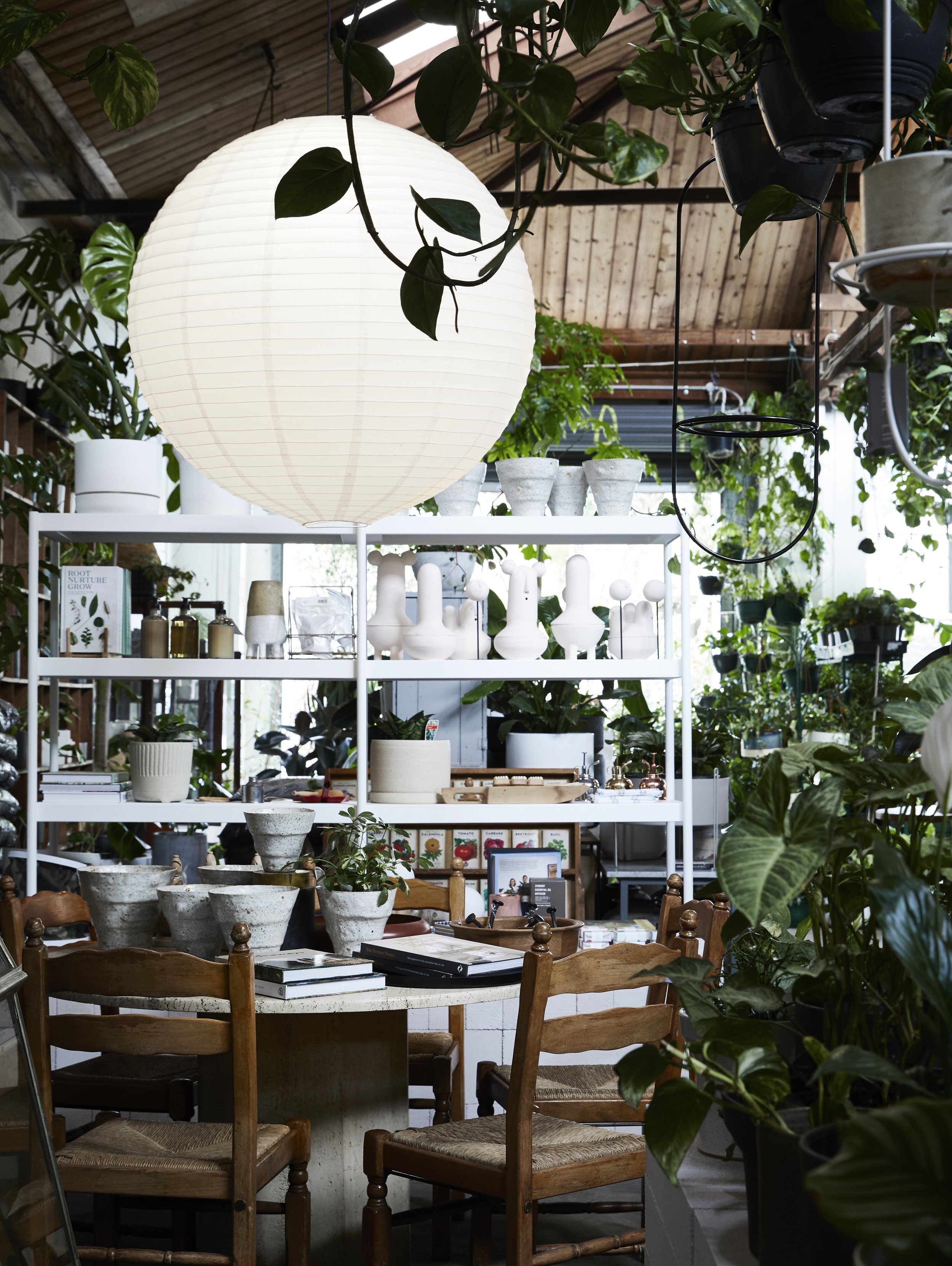 """""""We were excited to build an urban conservatory - housing a growing collection of sentimental plants which were acquired through friends, family and fellow gardeners,"""" says Jason.  The Plant Society  Flagship aims to embrace more than a retail space by allowing the community to meander and linger through a permanent oasis. Photo -  Armelle Habib ."""