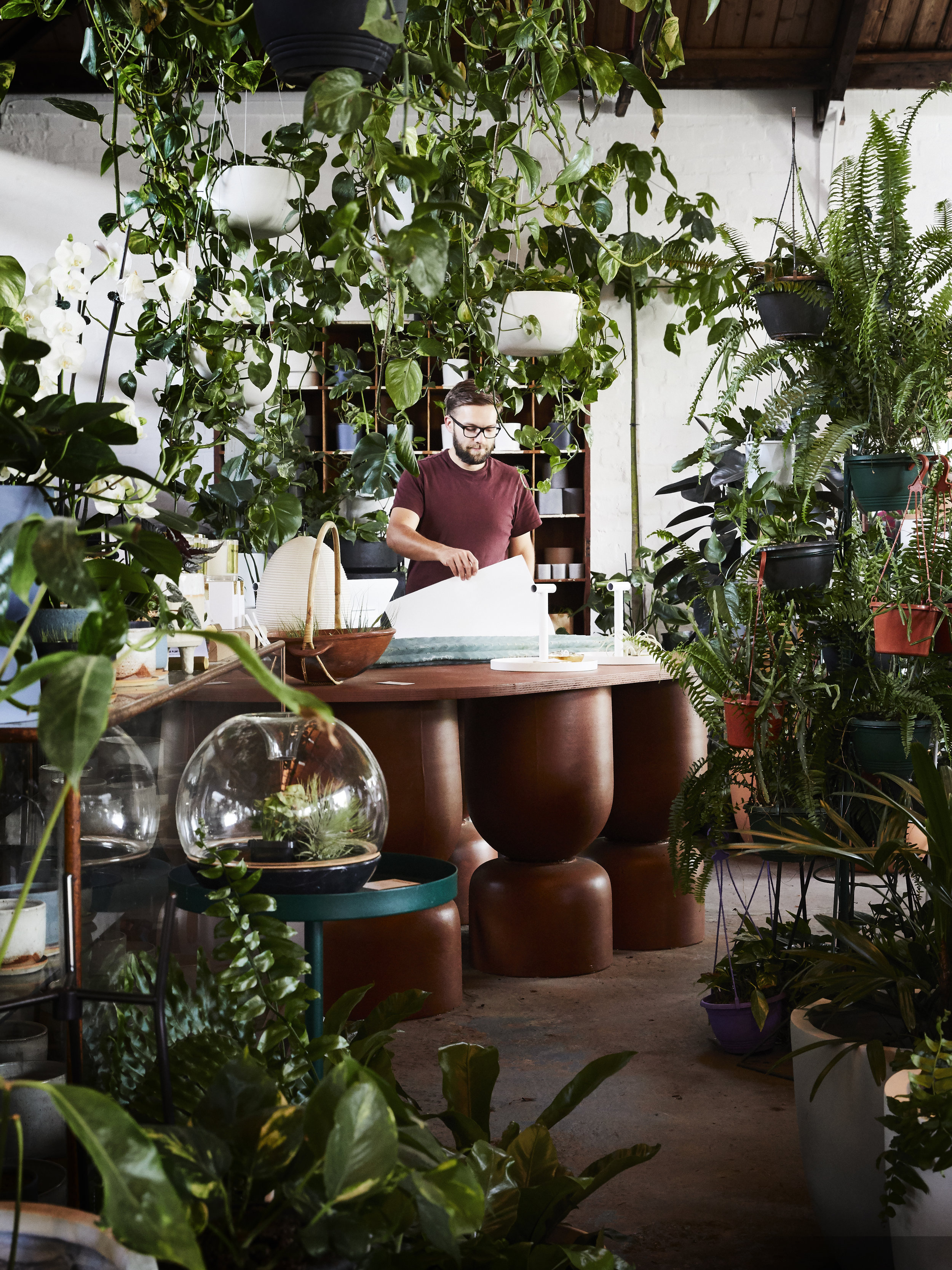 Nathan Smith in the  The Plant Society  Flagship store in Collingwood. Photo -  Armelle Habib .
