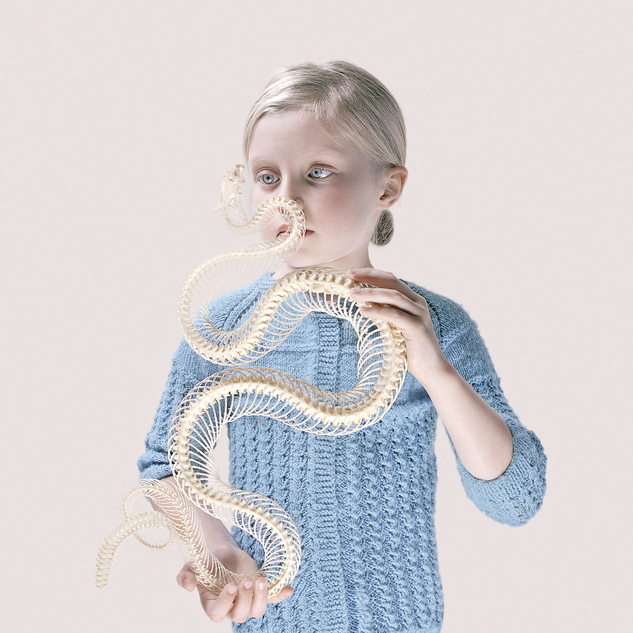 Rattlesnake Blues,  2016 by Petrina Hicks from  The Californian Works  series.