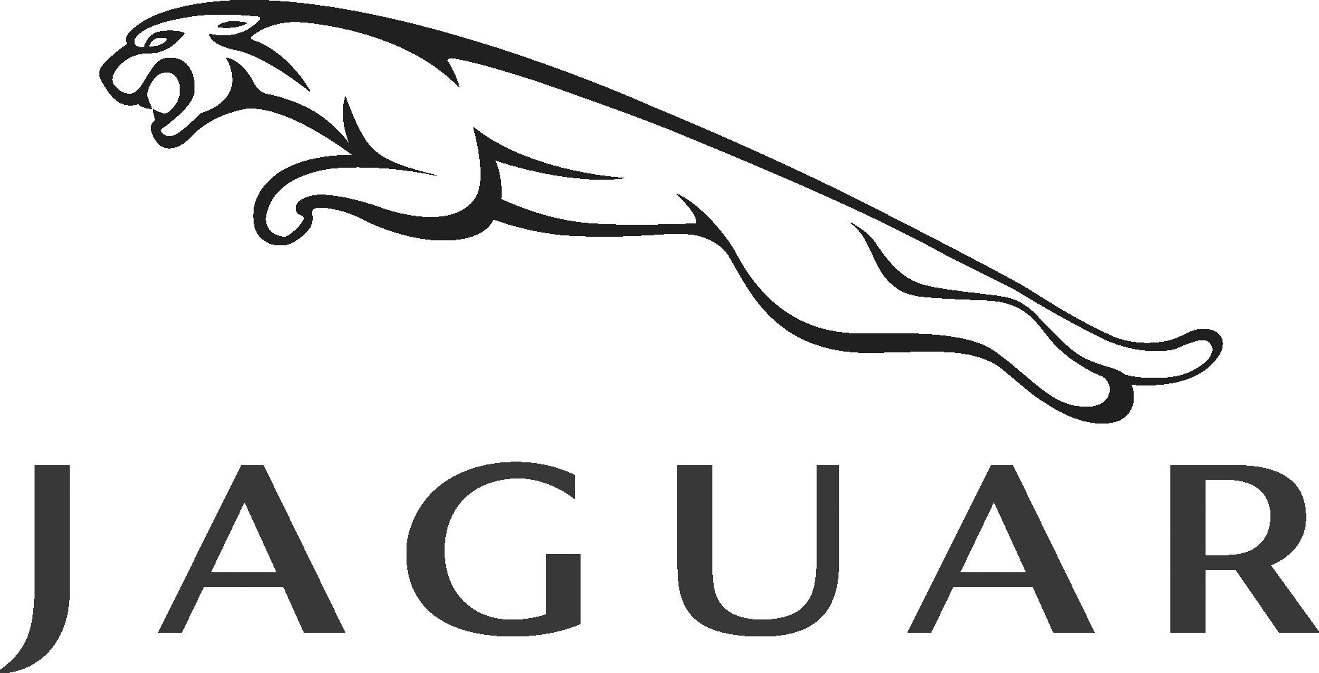 Jaguar-grey.png