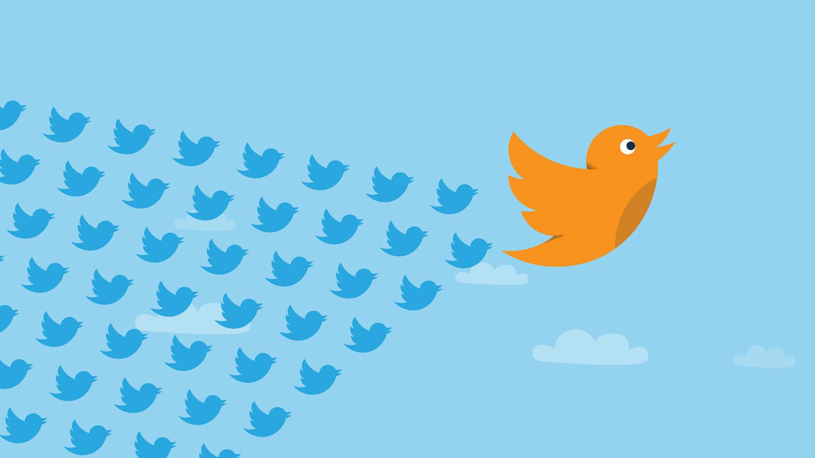 socialmedialeader.png