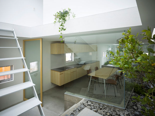 modern-couryard-dining-design-interior-garden6.jpg