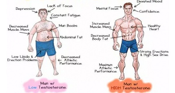 5-natural-ways-fix-low-testosterone-increased-libido-weight-loss.jpg