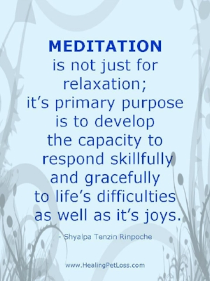 0caacc8fe615acc1b93b0c57ed753995--mindfulness-quotes-meditation-quotes.jpg
