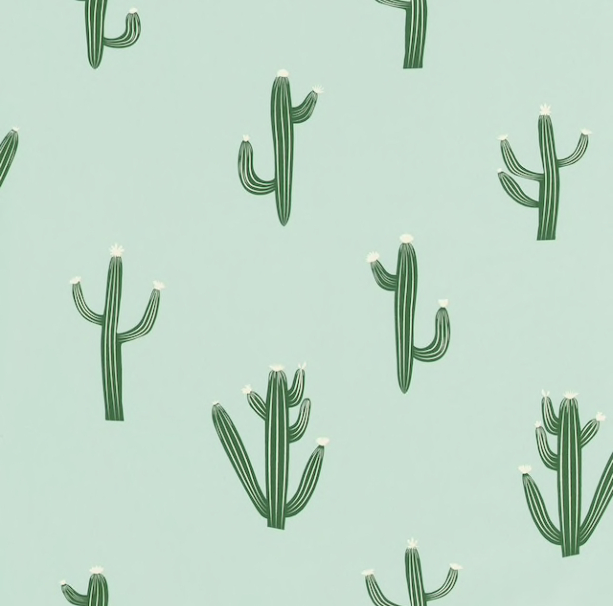 Free Hugs Cactus by Caselio