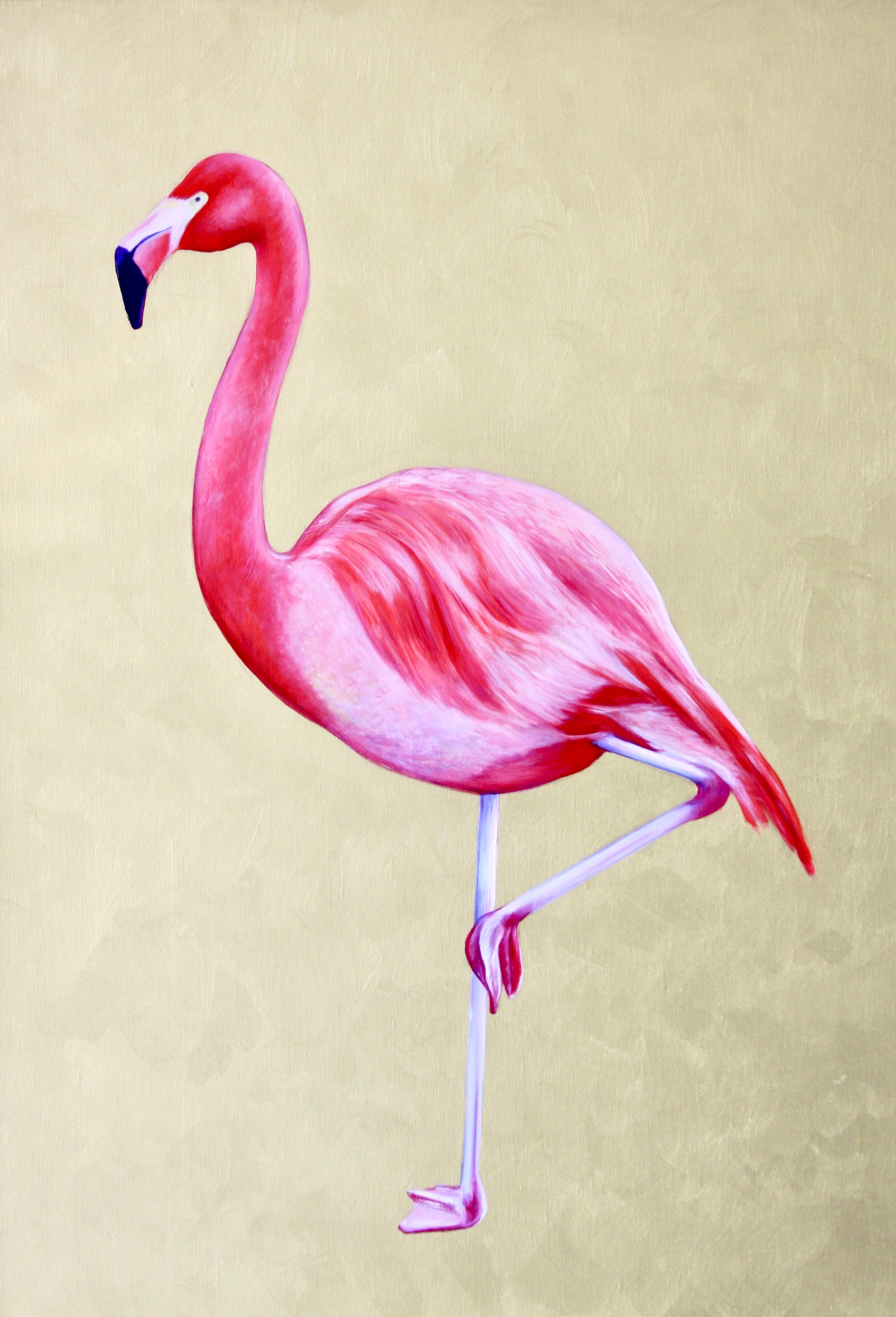 Flamingo #1