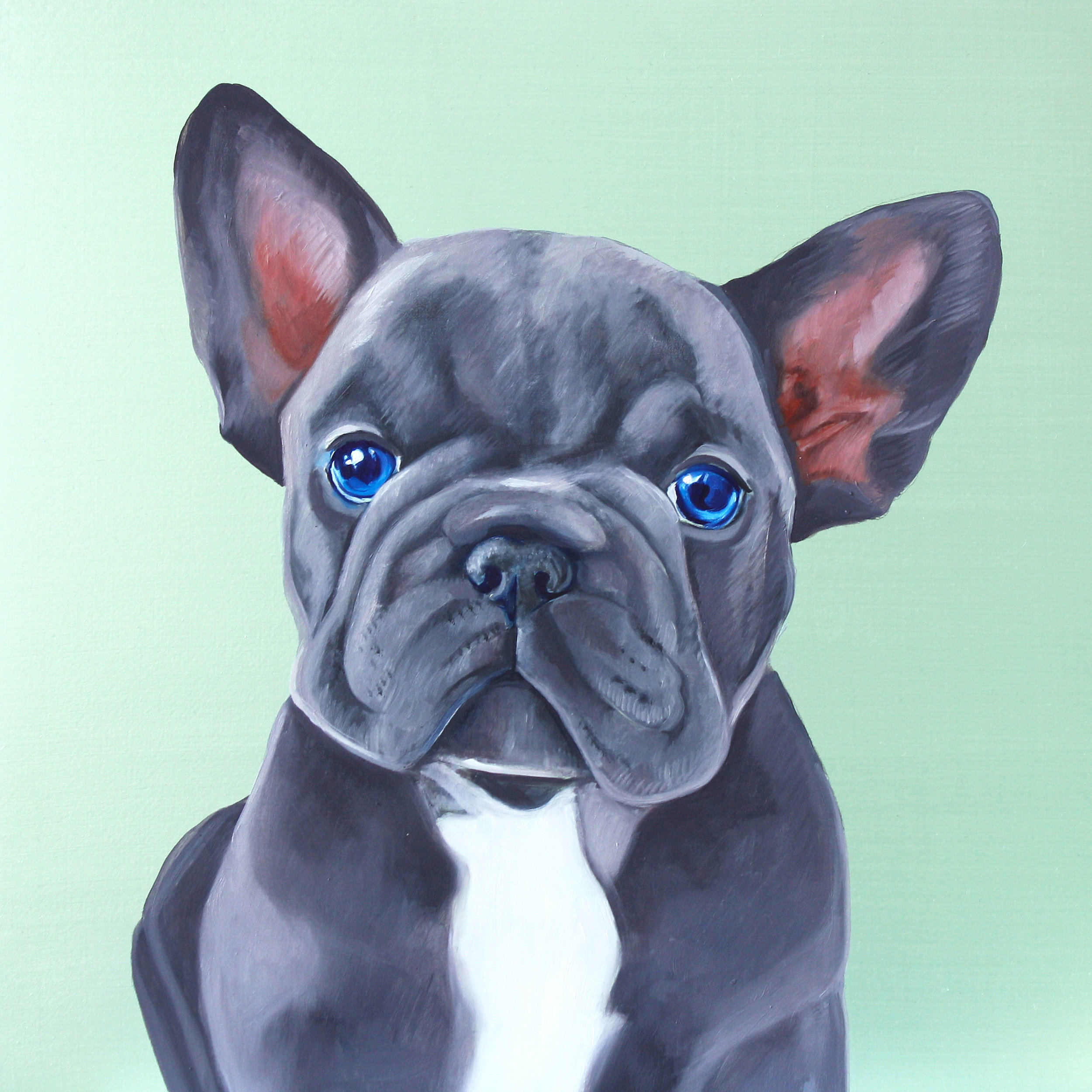 Frenchie SOLD