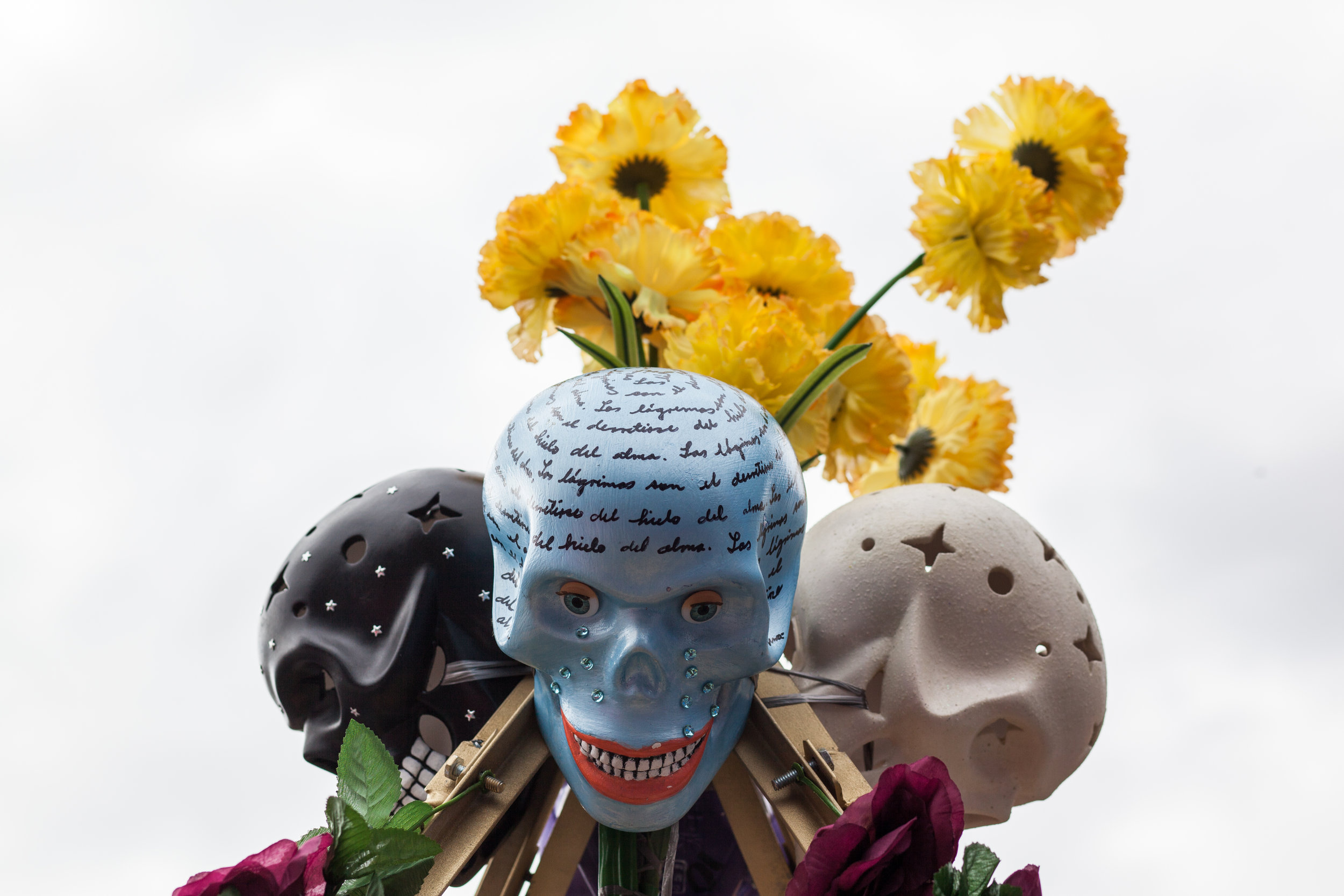 Beautiful colourful skulls prepared for the Day of the Dead in Mexico City.