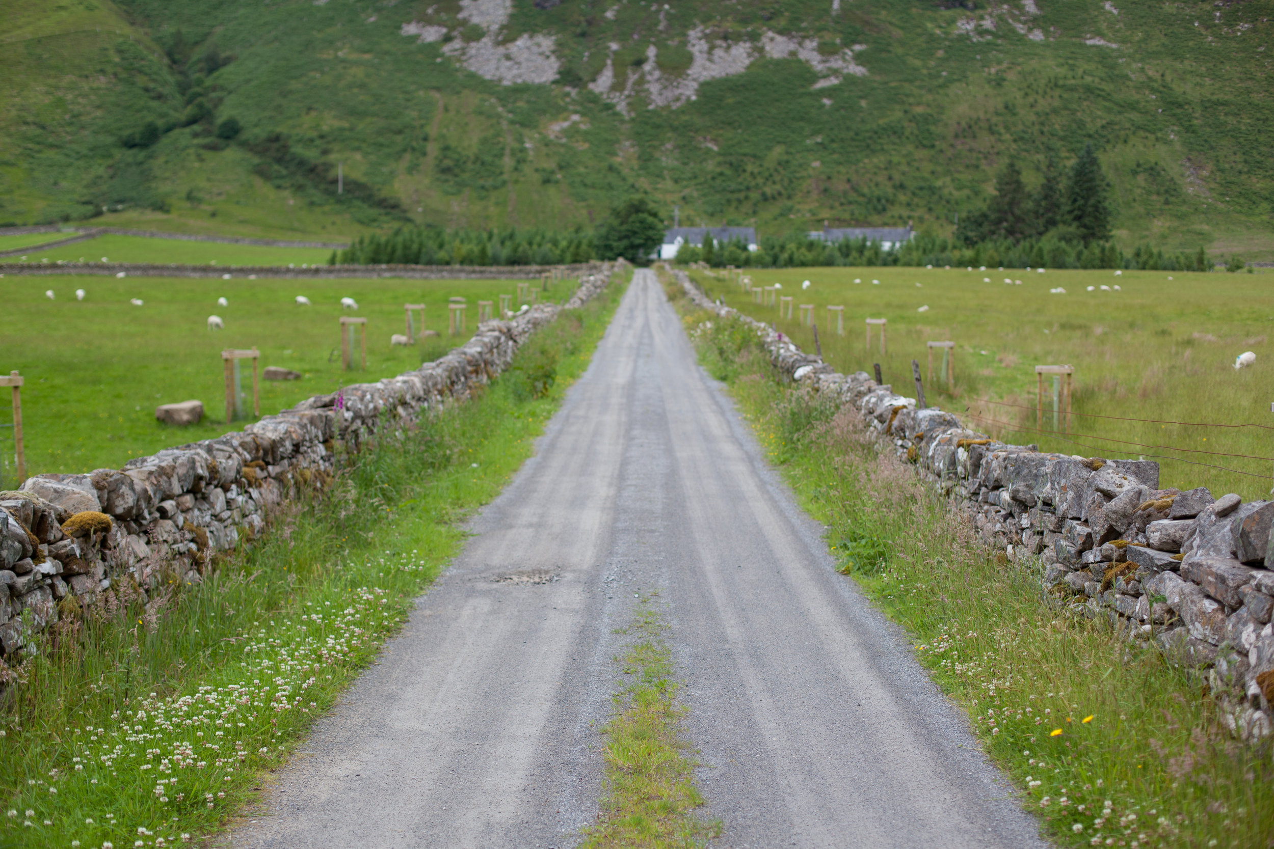 A road and and ancient low wall.