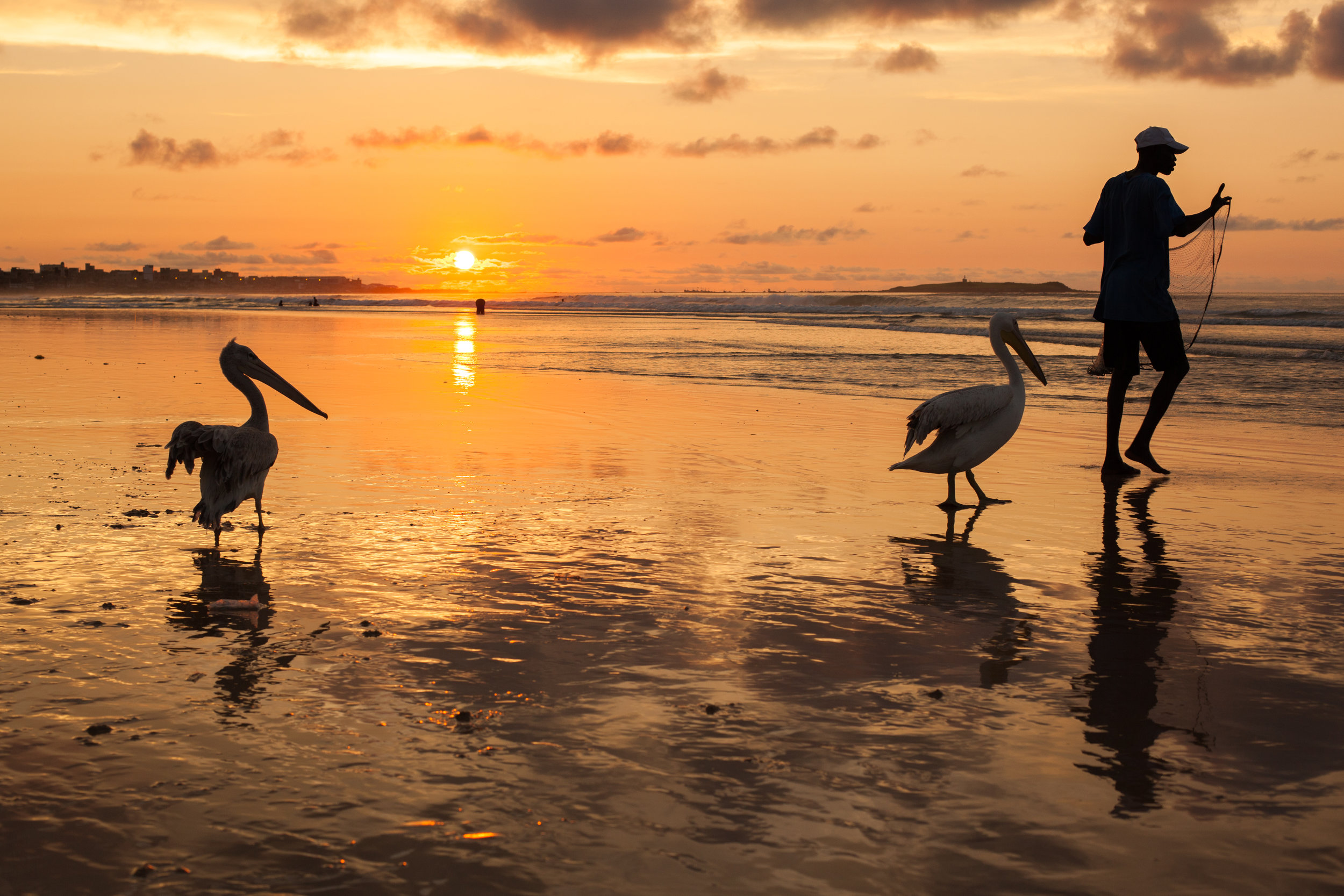 A fishermen and his pelicans at sunset in Senegal, West Africa.