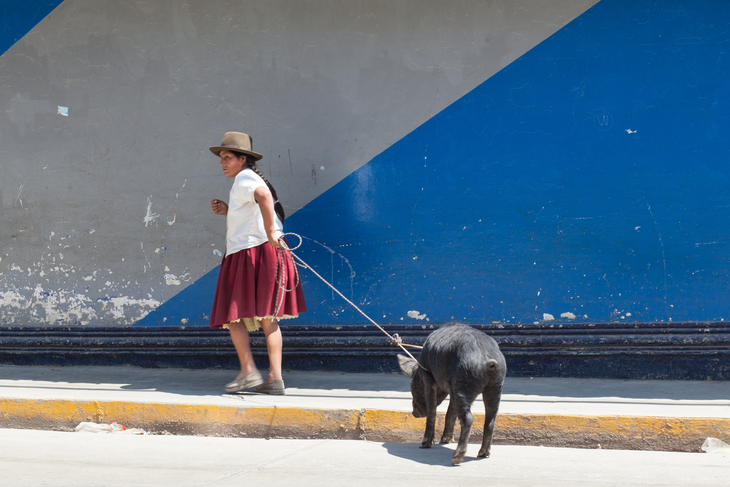 A woman leads her pig to the market in Andahuaylas.