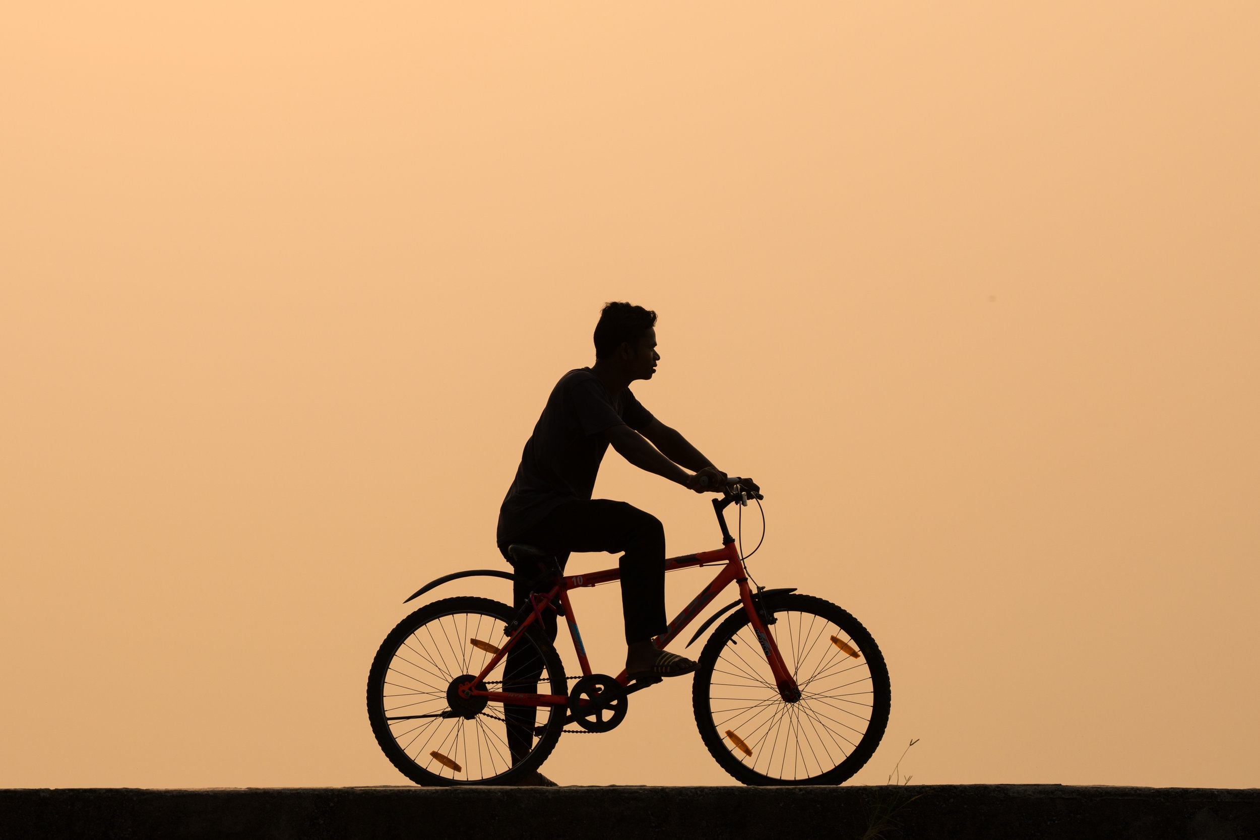 Silhouetted cycle at sunset, Kerala, India.