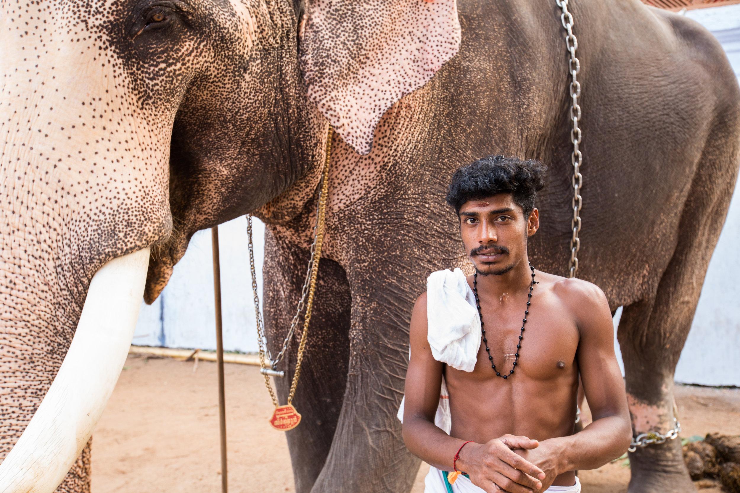 Indian Elephant Trainer Portrait.