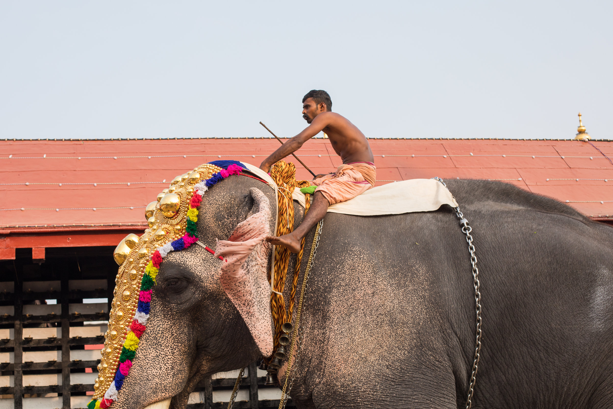 Visit Kerala by Geraint Rowland Photography.