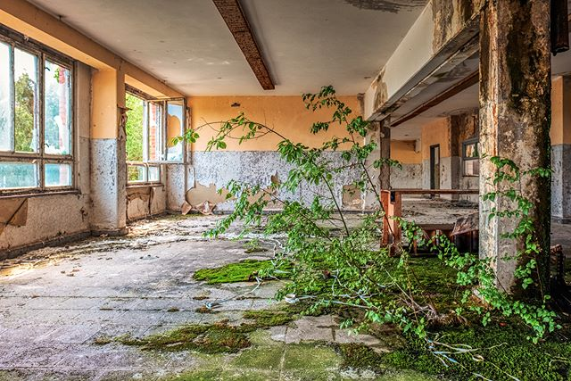 Abandoned NVA building - #zphoto © ZPhoto 2019  Take a look :  @natural_decay_ @suicide_urbex @caiya.banex @christian_urbex @k.fotoz_photografie @impression_the_world  #theurbexchallenge #g_s_i #germandecay #urbex_champions #kings_abandoned #urbexphoto #decay_illife #urbexpeople #bandorebelz #urbex_europe_ #abandonedafterdark #urbexchampions #urbanromantix #urbex #urbexworld #urbexphotography #abandoned #abandonedplaces #rottenfeed #jj_urbex #urbex_utopia #urbex_underground #urbex_rebels #urbex_supreme #grime_nation #decay_nation #kings_abandoned #all_is_abandoned #renegade_abandoned