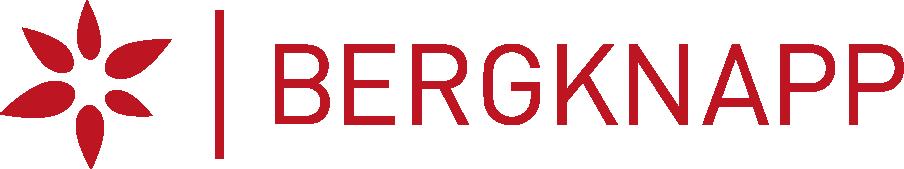 Bergknapp logo.png
