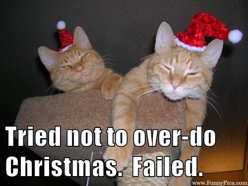tried not to overdo christmas.jpeg