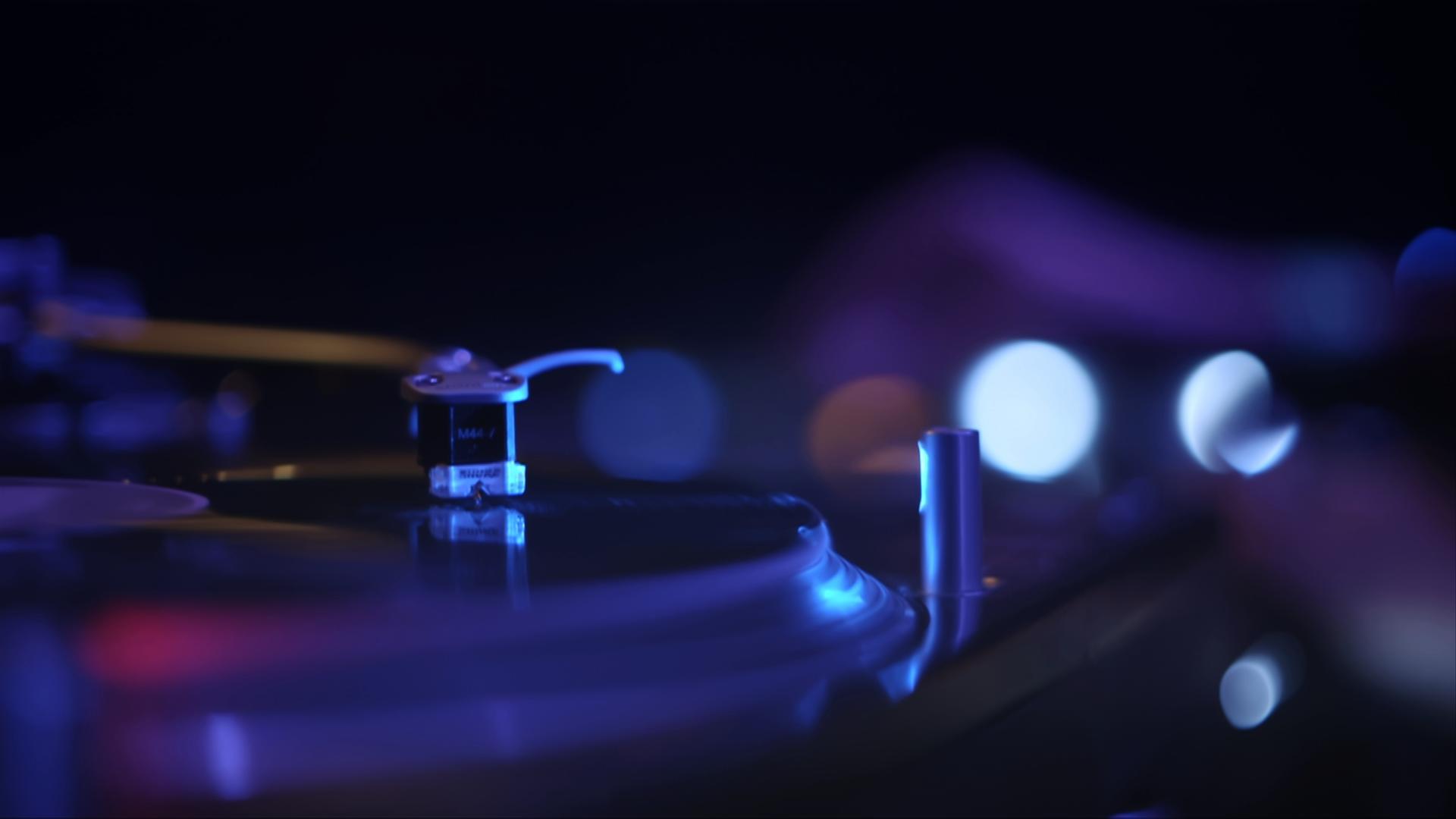 Niddle & Vinyl.png