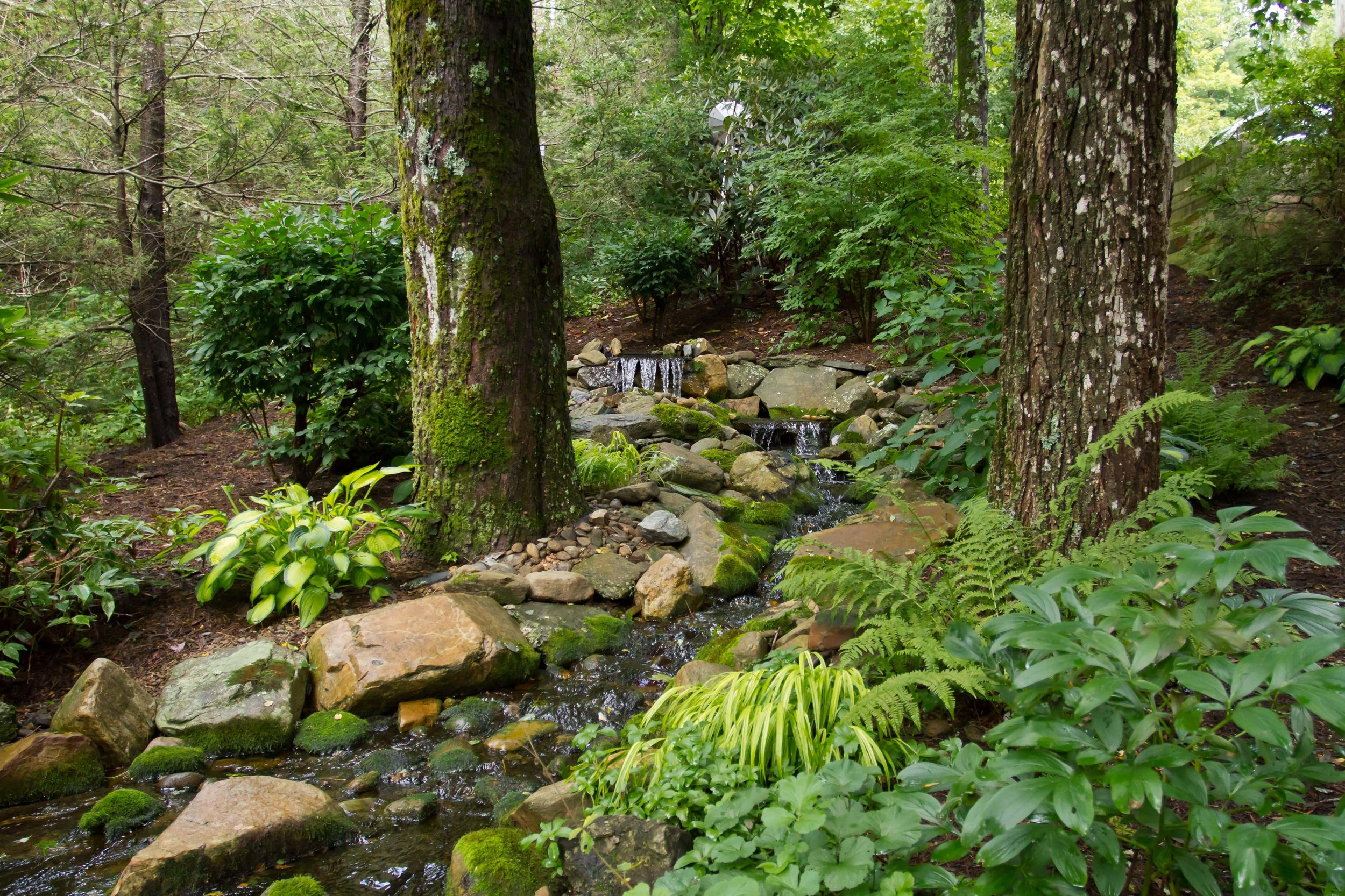 water-features-installation-maintenance-high-country-nc-boone-wrens-nest-landscape.jpg