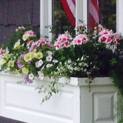 container-gardens-wrens-nest-landscaping-boone-nc.JPG