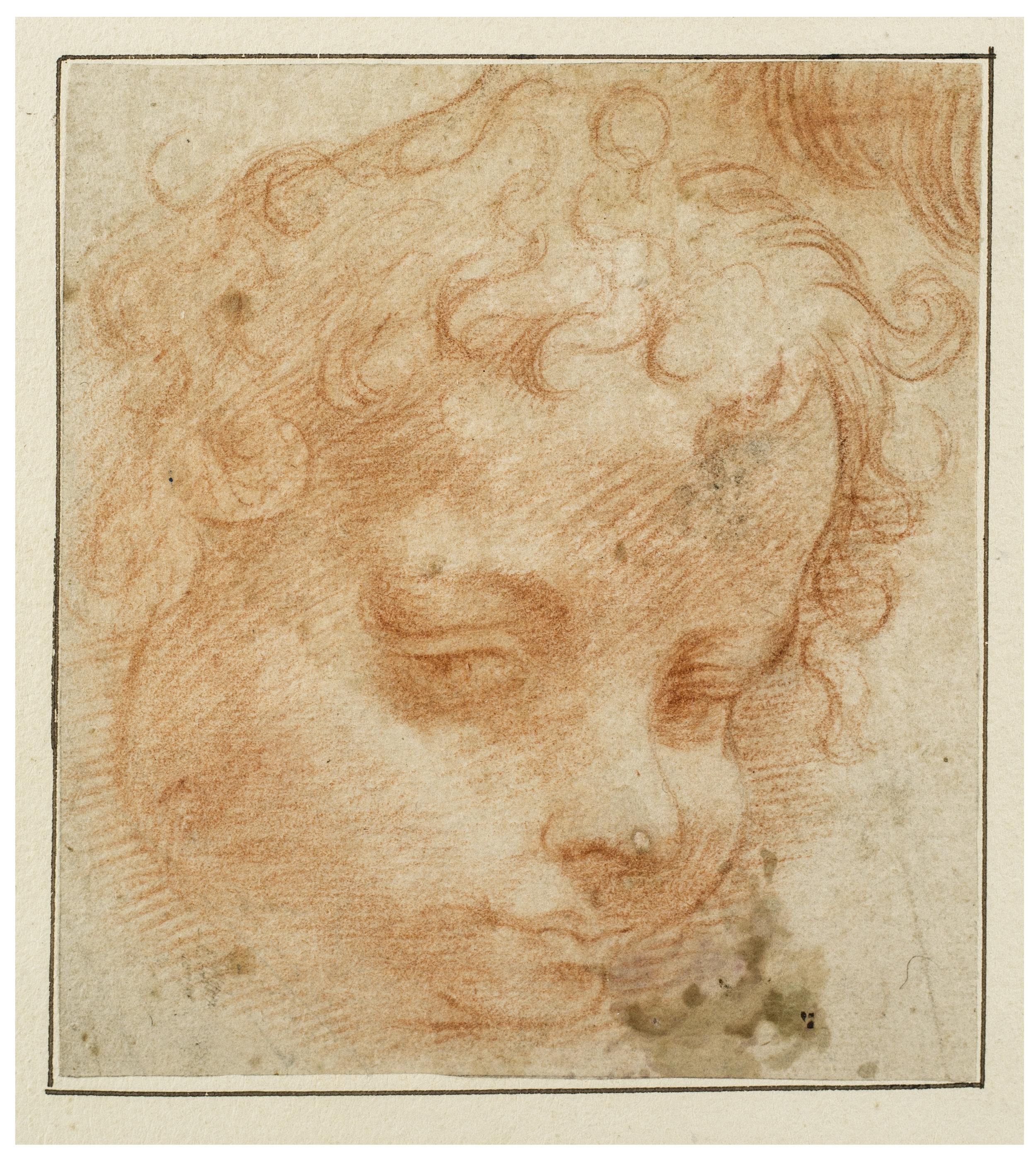 Michelangelo Anselmi,  Head of a Putto