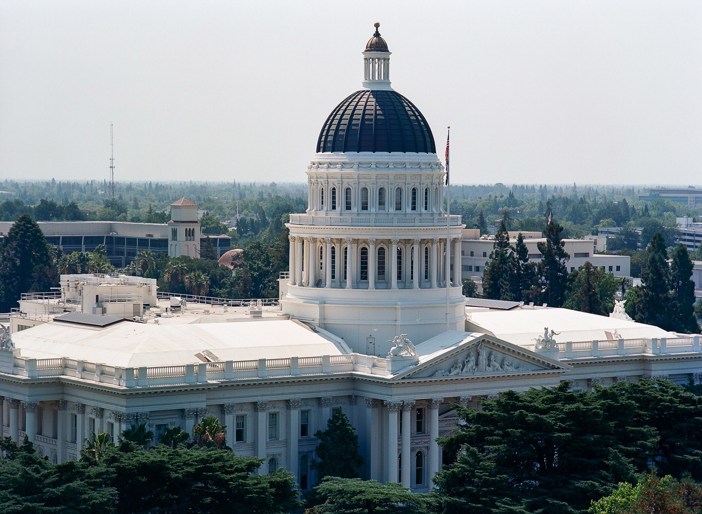 "Sacramento Fun Facts   Whether you've been in Sacramento for years or just arriving, there are tons of fun facts in the city dubbed, ""The City of Trees."" Take a look of our list and let us know your favorite thing about Sactown."