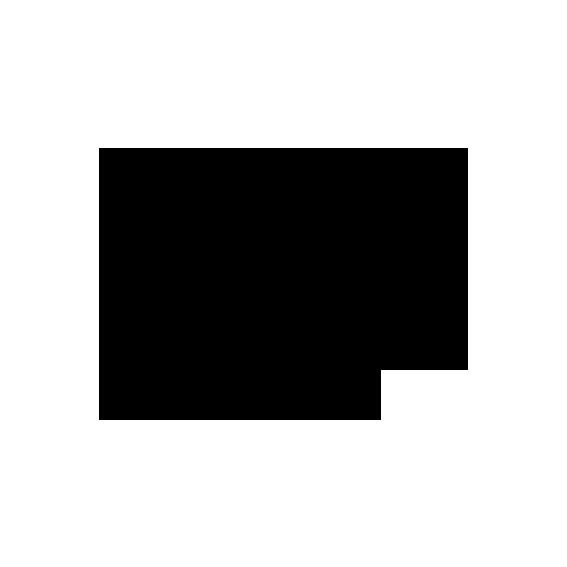 noun_738359_cc.png