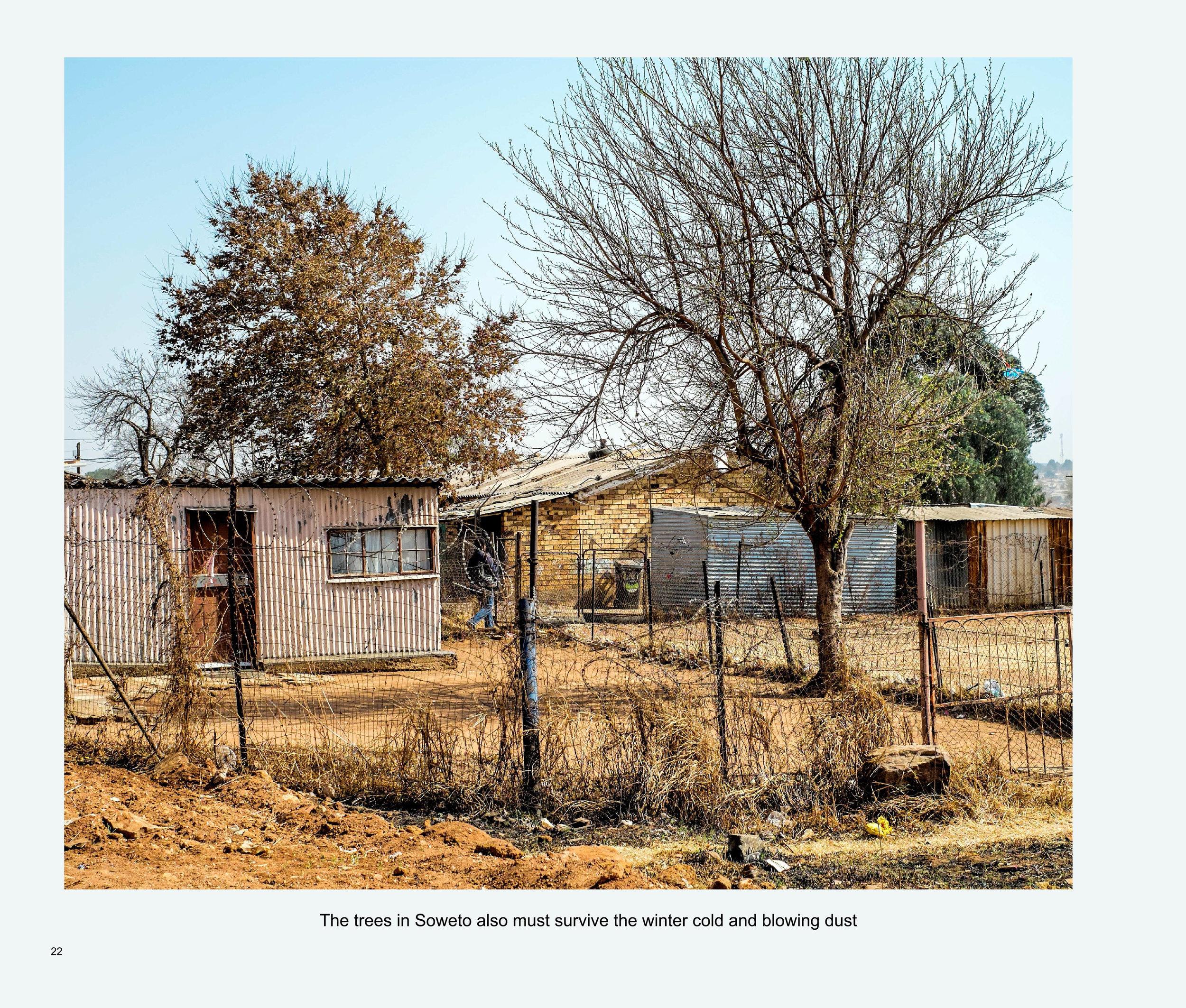 ImagesASouthernAfricaRoadTrip-24.jpg