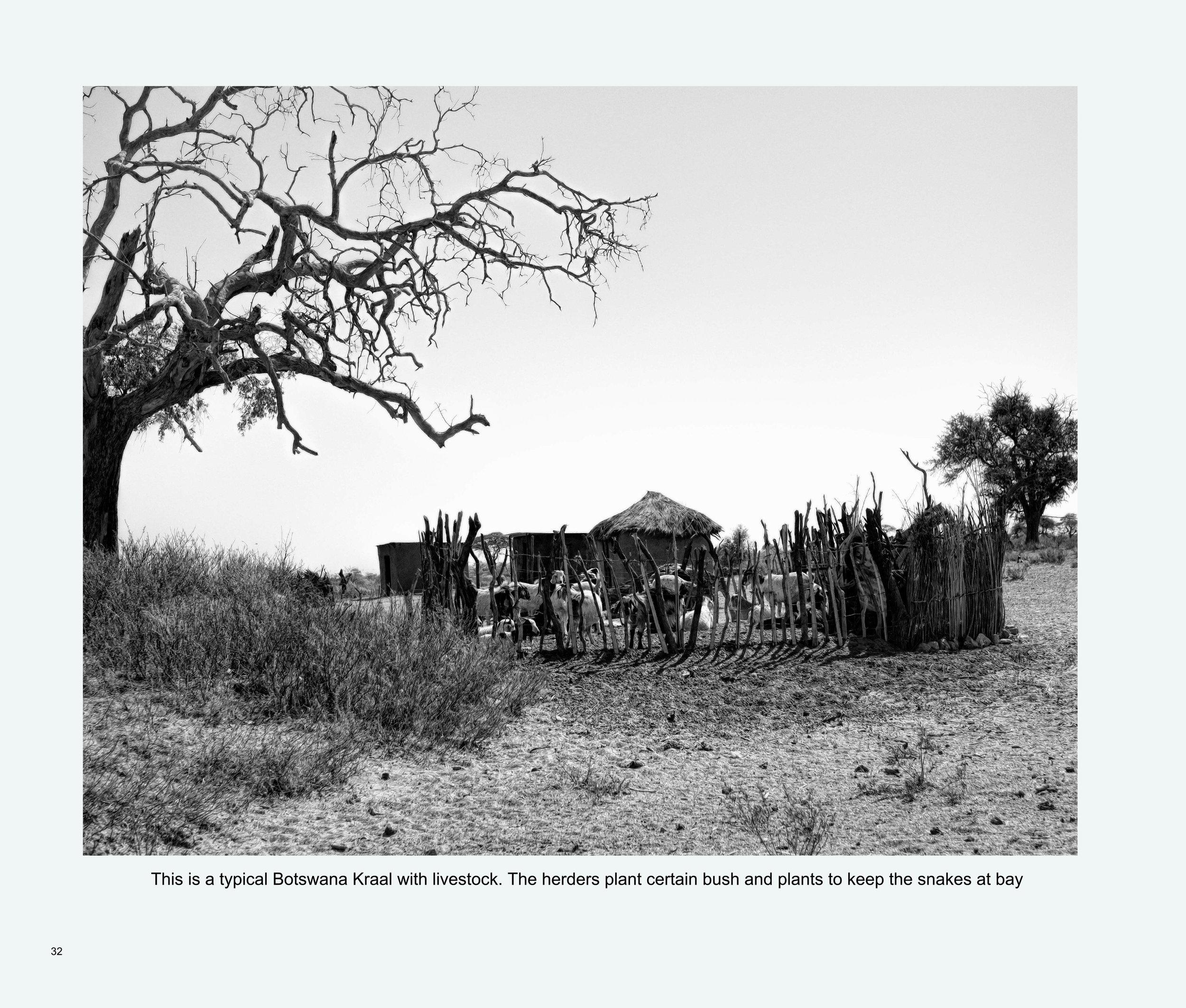 ImagesASouthernAfricaRoadTrip-34.jpg