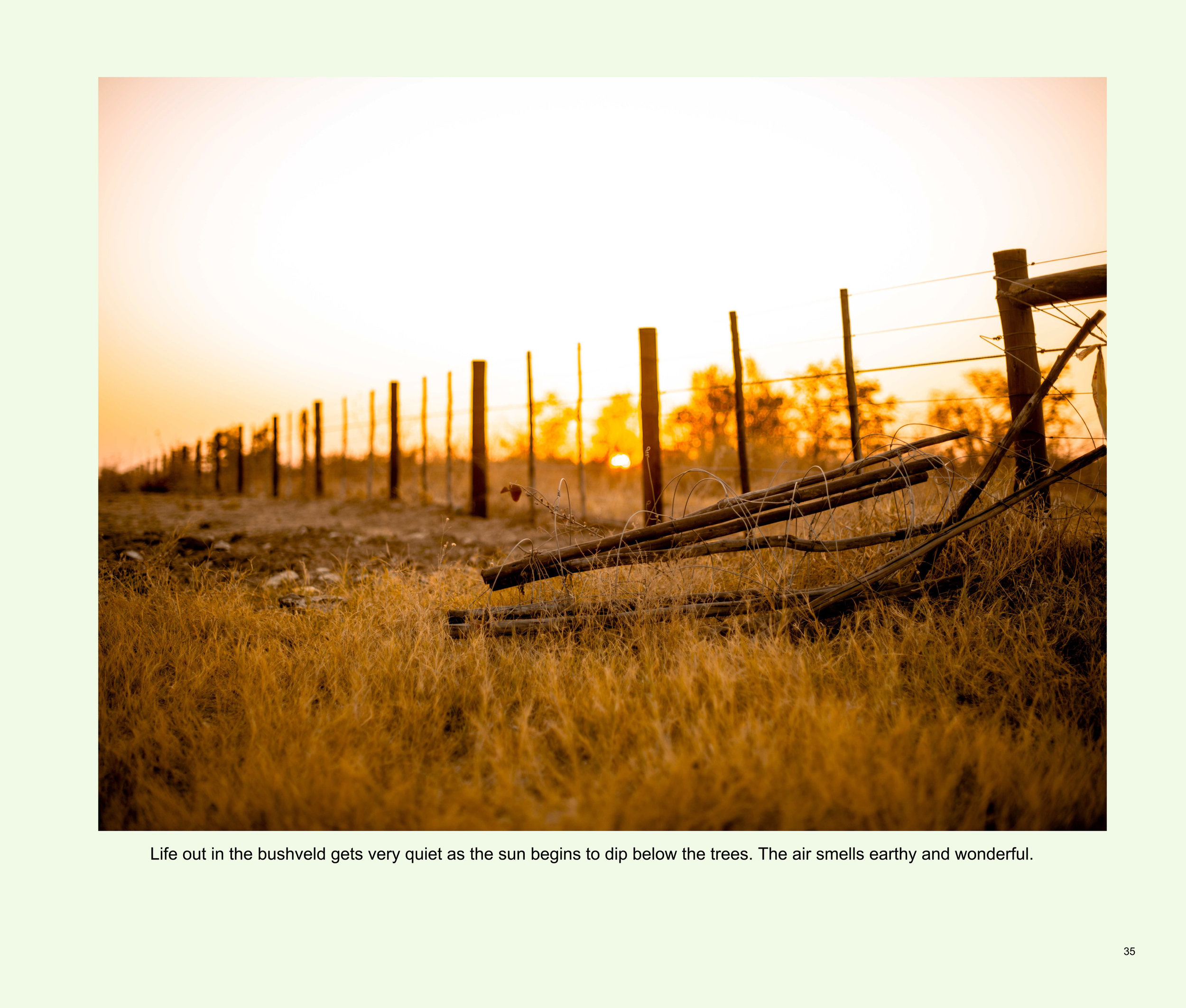 ImagesASouthernAfricaRoadTrip-37.jpg