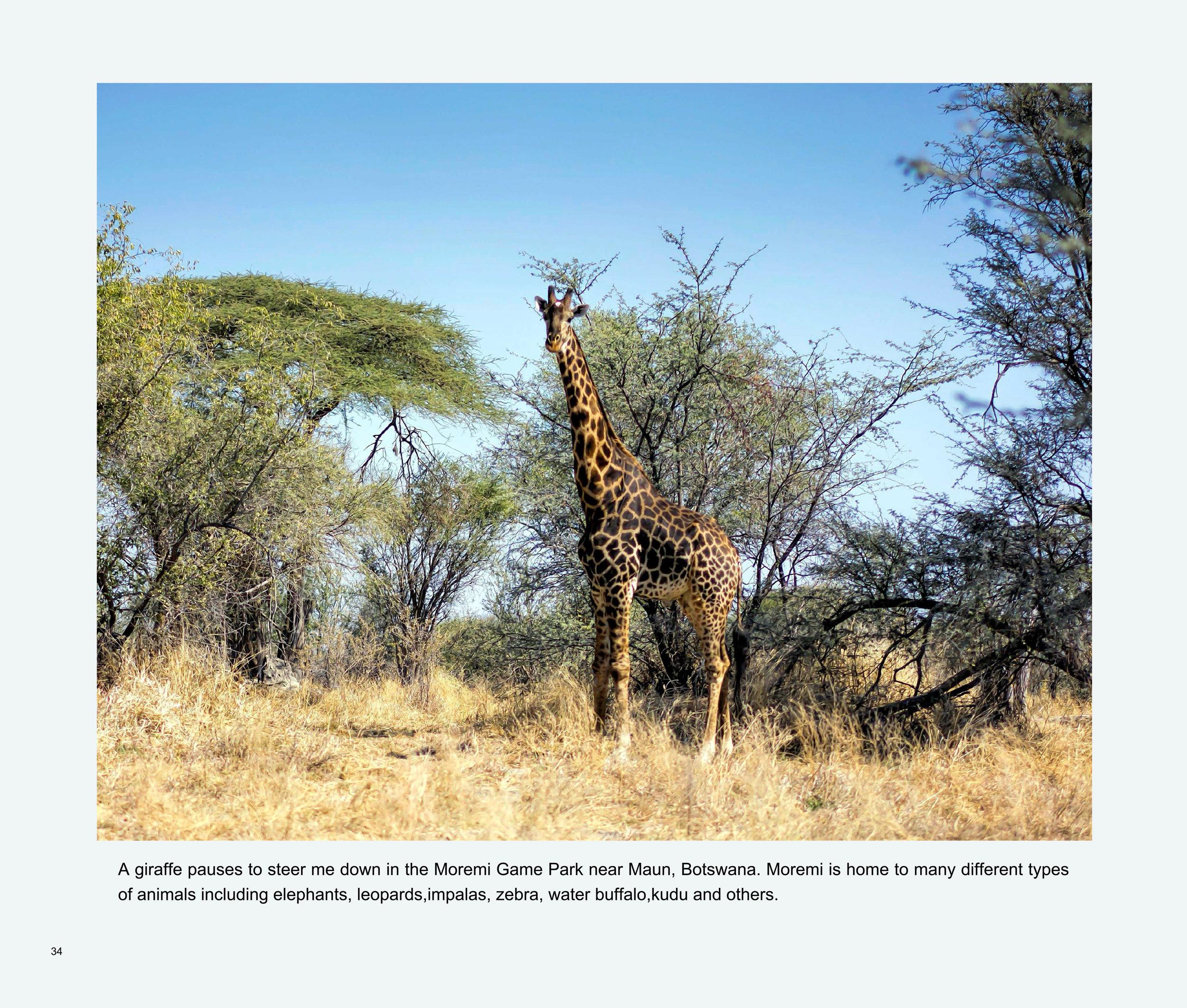 ImagesASouthernAfricaRoadTrip-36.jpg
