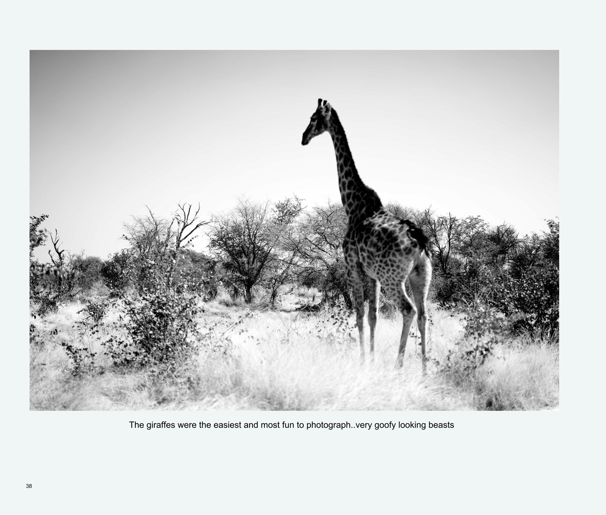 ImagesASouthernAfricaRoadTrip-40.jpg