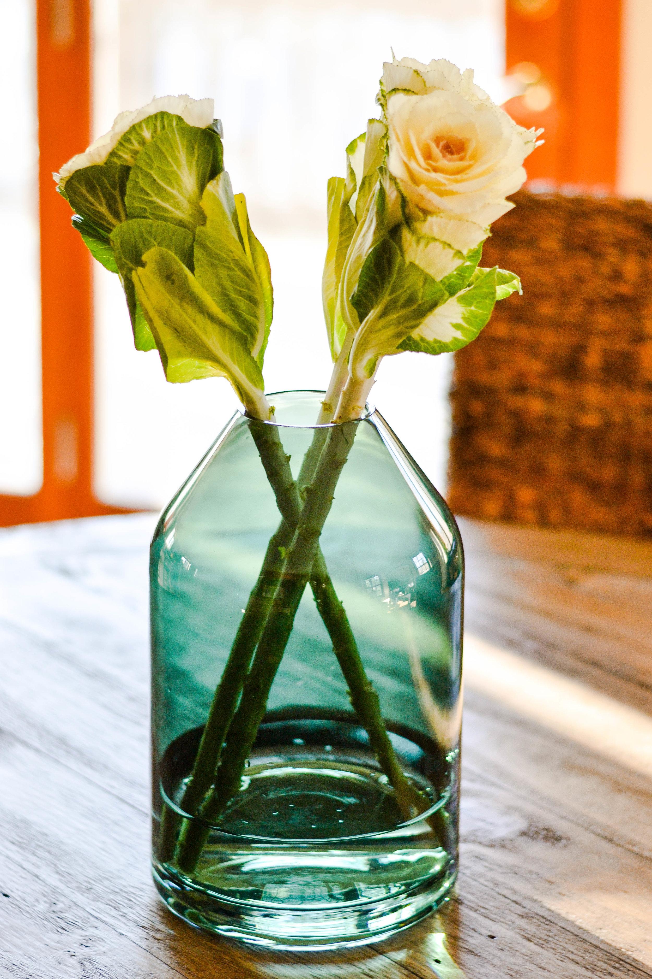 PilgrimProjectcabbageflower.jpg