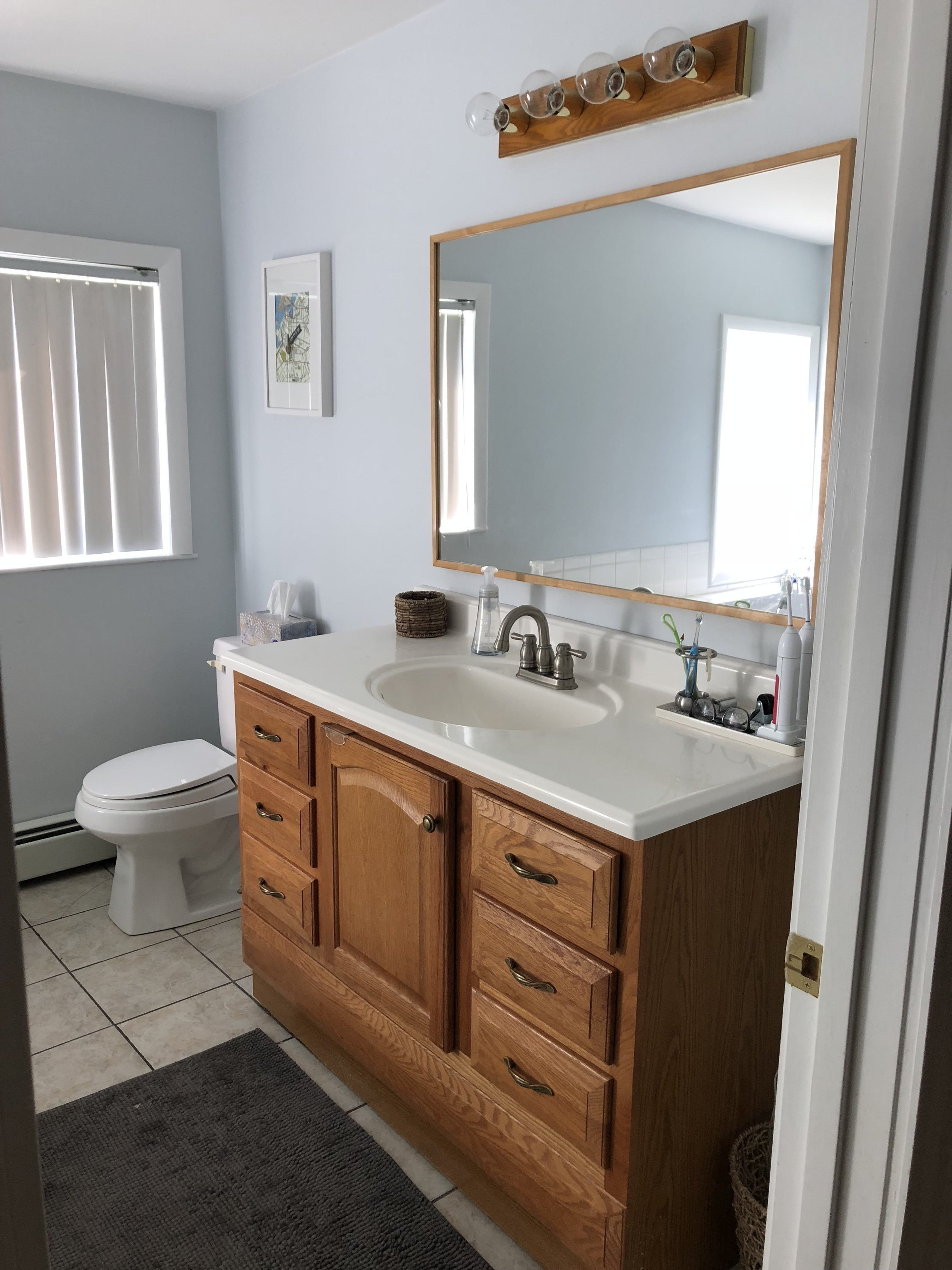 Gray Oak Studio - 2 Day 200 Dollars Challenge - Before Photo of Bathroom