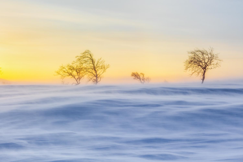arctic_desert-29.jpg