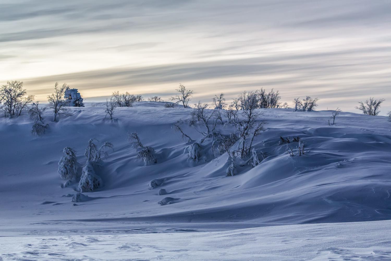 arctic_desert-103.jpg