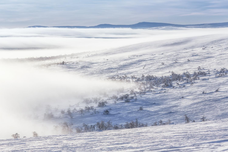 arctic_desert-129.jpg