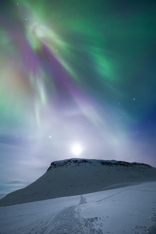 northern_lights_lapland_winter-47.jpg